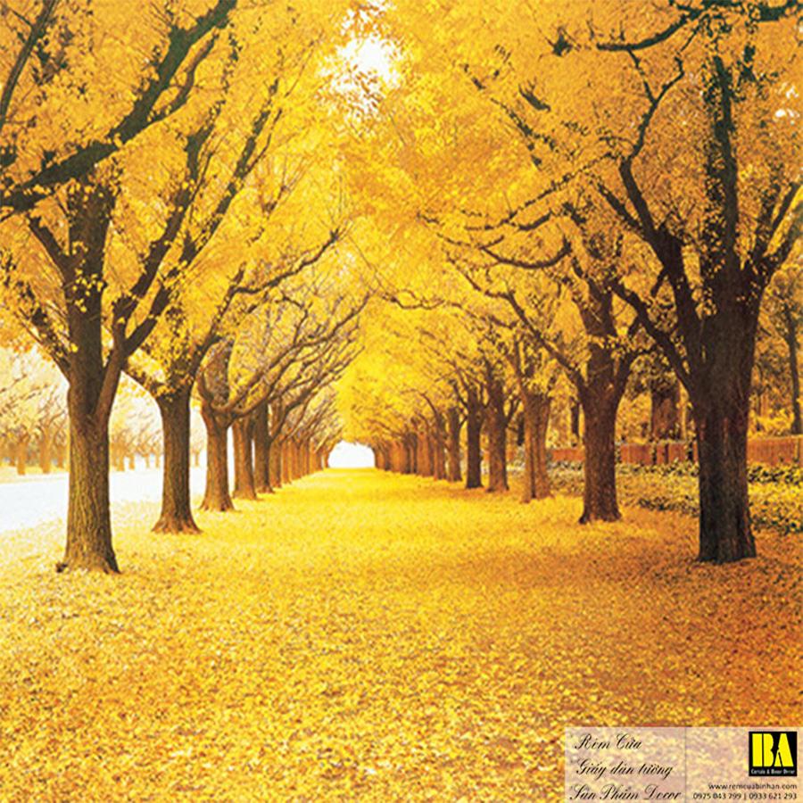 Tranh dán tường phong cảnh mùa thu   Tranh dán tường in mực dầu Bình An